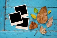 Fondo del otoño con las hojas secas y los marcos en blanco de la foto Imágenes de archivo libres de regalías