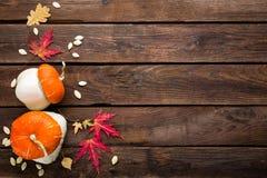 Fondo del otoño con las hojas y calabazas, acción de gracias y tarjeta de Halloween Imágenes de archivo libres de regalías