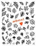 Fondo del otoño, gráfico de bosquejo para su diseño Fotos de archivo