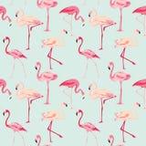 Fondo del pájaro del flamenco stock de ilustración