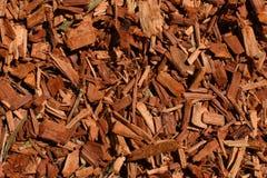 Fondo del pacciame della corteccia dell'eucalyptus Immagine Stock
