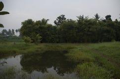 Fondo del paesaggio in Asia fotografia stock libera da diritti