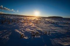 Fondo del paesaggio del campo di inverno Immagini Stock