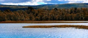 Fondo del paesaggio del lago di autunno della Norvegia Fotografie Stock Libere da Diritti