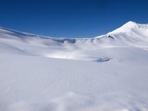Fondo del paesaggio di inverno Fotografia Stock Libera da Diritti