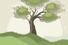 Fondo del paesaggio di scena dell'albero Fotografia Stock