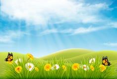 Fondo del paisaje de la naturaleza de la primavera con las flores stock de ilustración