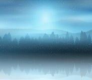 Fondo del paisaje del bosque del invierno Imagen de archivo