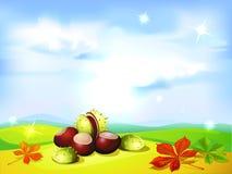 Fondo del paisaje del otoño con las castañas Foto de archivo