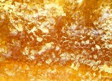 Fondo del panal de oro delicioso con el swe pegajoso que fluye Foto de archivo