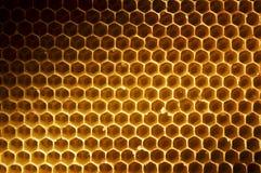 Fondo del panal sin la miel Imagen de archivo