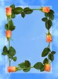 Fondo del papel azul de la carta de amor del marco de Rose fotografía de archivo libre de regalías