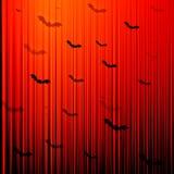 Fondo del pipistrello di Halloween Fotografie Stock