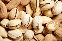 Fondo del pistacchio Immagini Stock