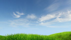 Fondo del prado y del cielo stock de ilustración