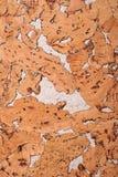 Fondo del primer y textura de la superficie de madera del tablero del corcho imagen de archivo libre de regalías