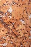 Fondo del primer y textura de la superficie de madera del tablero del corcho foto de archivo libre de regalías