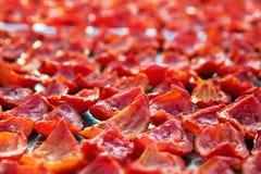 Fondo del primo piano dei pomodori rossi che si asciugano all'aperto un giorno soleggiato Immagini Stock Libere da Diritti