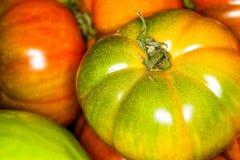 Fondo del primo piano del cuore del bue dei pomodori macro Fotografia Stock