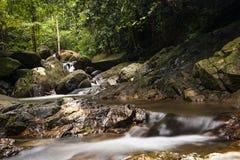 Fondo del río con las pequeñas cascadas en bosque tropical fotos de archivo