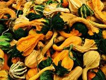 Fondo del raccolto di autunno Immagini Stock Libere da Diritti