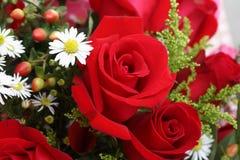 Fondo del ramillete de flores fotos de archivo libres de regalías