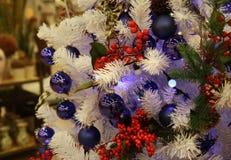 Fondo del ramo dell'albero di Natale Fotografia Stock Libera da Diritti