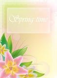 Fondo del resorte con las flores Imagenes de archivo