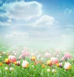 Fondo del resorte de Pascua imagenes de archivo