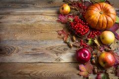 Fondo del saludo de la acción de gracias con las calabazas anaranjadas, manzanas a Imagenes de archivo