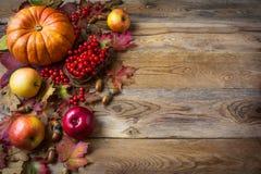 Fondo del saludo de la acción de gracias con las calabazas, las manzanas y caída Fotos de archivo libres de regalías
