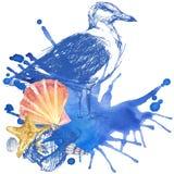 Fondo del Seashell Fotos de archivo