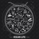 Fondo del seaworld del vector Imagen de archivo