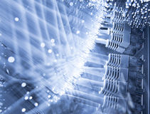 Servidor y fibras ópticas Fotografía de archivo libre de regalías