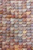 Fondo del shell de conchas de peregrino Imagen de archivo