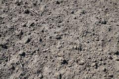 Fondo del suelo seco Fotografía de archivo