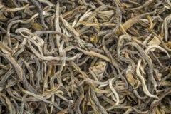 Fondo del tè verde del Yunnan Mao Feng Immagini Stock Libere da Diritti