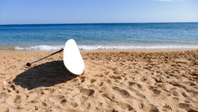 Fondo del tablero que practica surf Fotografía de archivo libre de regalías