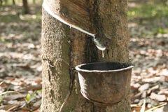 Fondo del taglio della gomma vago Fotografia Stock Libera da Diritti