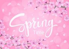 Fondo del tiempo de primavera con las flores de las flores de cerezo stock de ilustración