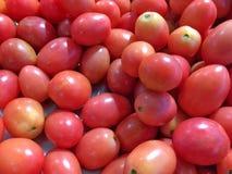 Fondo del tomate Fotos de archivo