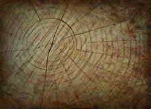 Fondo del tronco de Grunge Imágenes de archivo libres de regalías