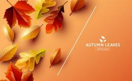Fondo del vector con Autumn Falling Leaves ilustración del vector