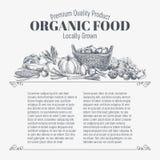 Fondo del vector con el alimento biológico dibujado mano stock de ilustración