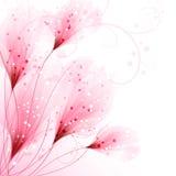 Fondo del vector con las flores Imagen de archivo