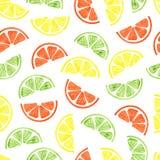 Fondo del vector con las rebanadas coloridas de la fruta cítrica stock de ilustración