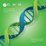 Fondo del vector de la célula de la molécula de la DNA Fotos de archivo
