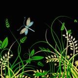 Fondo del vector de la libélula y del follaje Fotos de archivo
