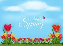 Fondo del vector de la naturaleza para acoger con satisfacción la primavera stock de ilustración