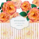 Fondo del vector de la tarjeta de las flores de las rosas del vintage El ejemplo romántico para la tarjeta de la invitación y de  Foto de archivo libre de regalías